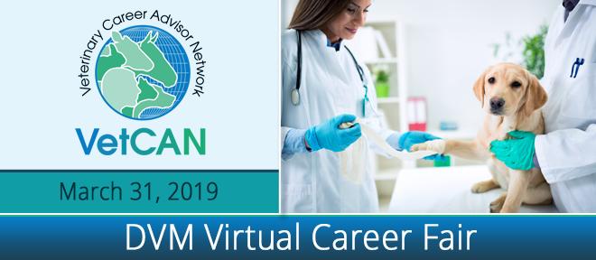 DVM Virtual Career Fair Banner