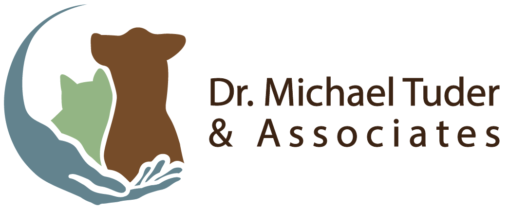 Go to Dr. Michael Tuder's website