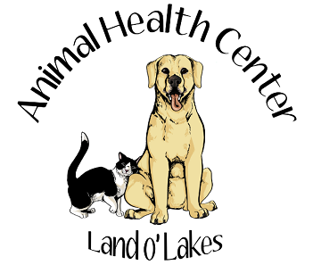 Animal Health Center Land O Lakes